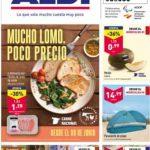 folleto Aldi ofertas hasta 15 junio 2021